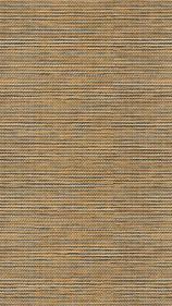 Сафари 055