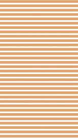 Basic морковный